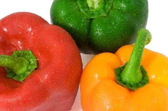 terrine de vegetales